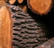 Suszone komorowo drewno kominkowe Saltus